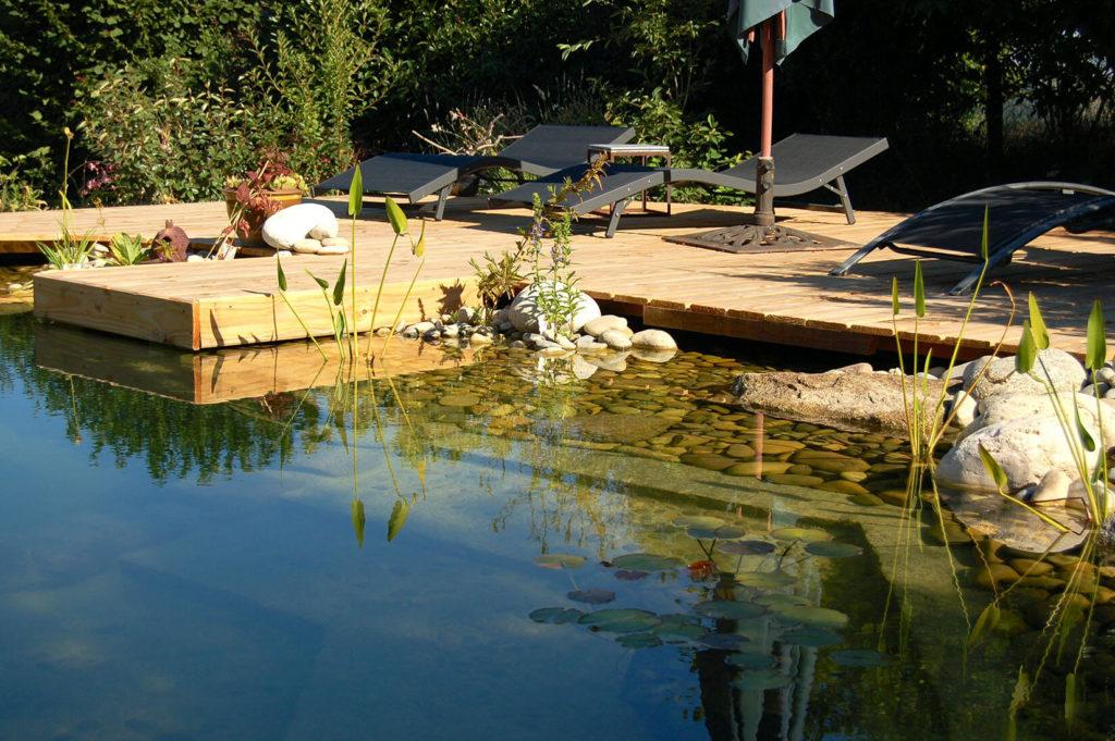 Zwembad: Een foto van een zwemvijver in de zomer.