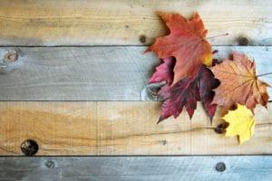 Is jouw woning klaar voor de herfst? Een afbeelding van herfstbladeren.